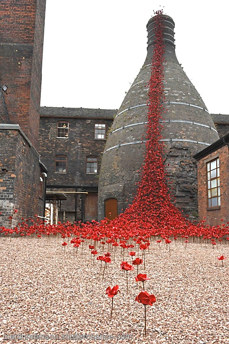 Weeping Window  ceramic poppy display
